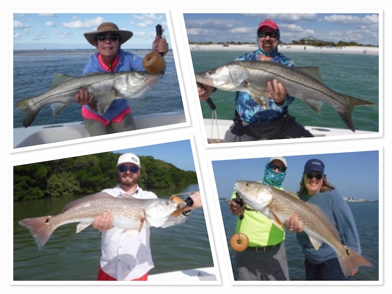 2017may tampa fishing report fishing reports tampa for Tampa bay fishing report