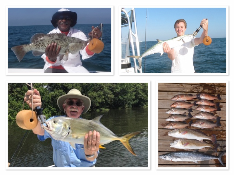 Tampa Clearwater Reef Fishing