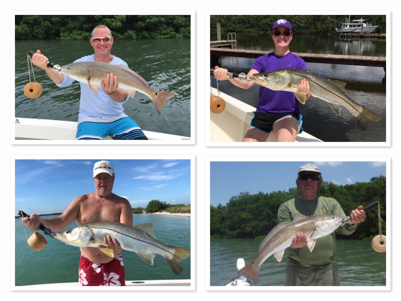 Fall Redfish and Snook Fishing in Clearwater