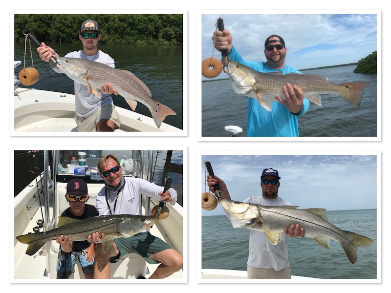 Big Snook and Redfish in Clearwater