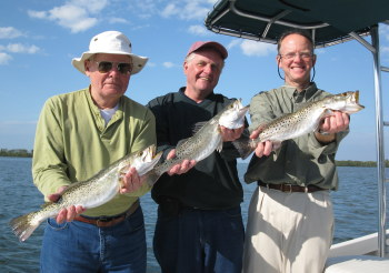 3 fishermen with big Tampa Bay seatrout