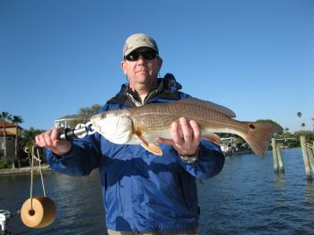 Dockfishing for Winter redfish
