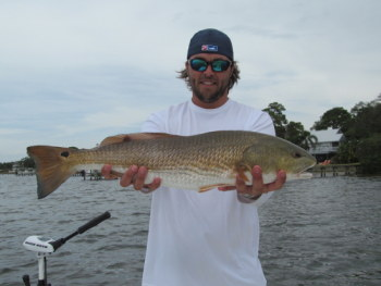 Dock Fishing for Tampa Redfish