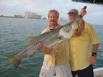 Tampa Summer Snook Fishing